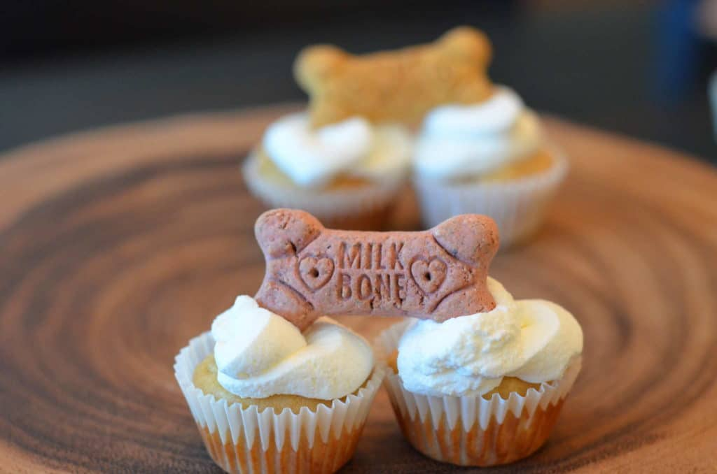 Max & Ginger Pupcakes