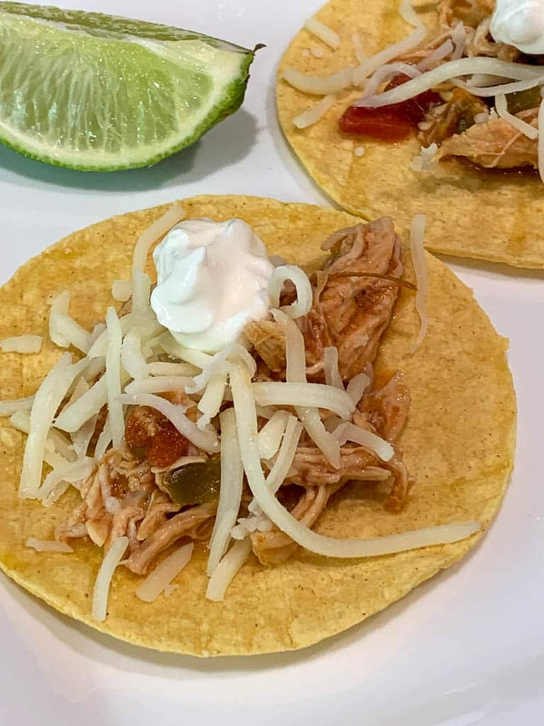 Instant Pot Shredded Salsa Chicken