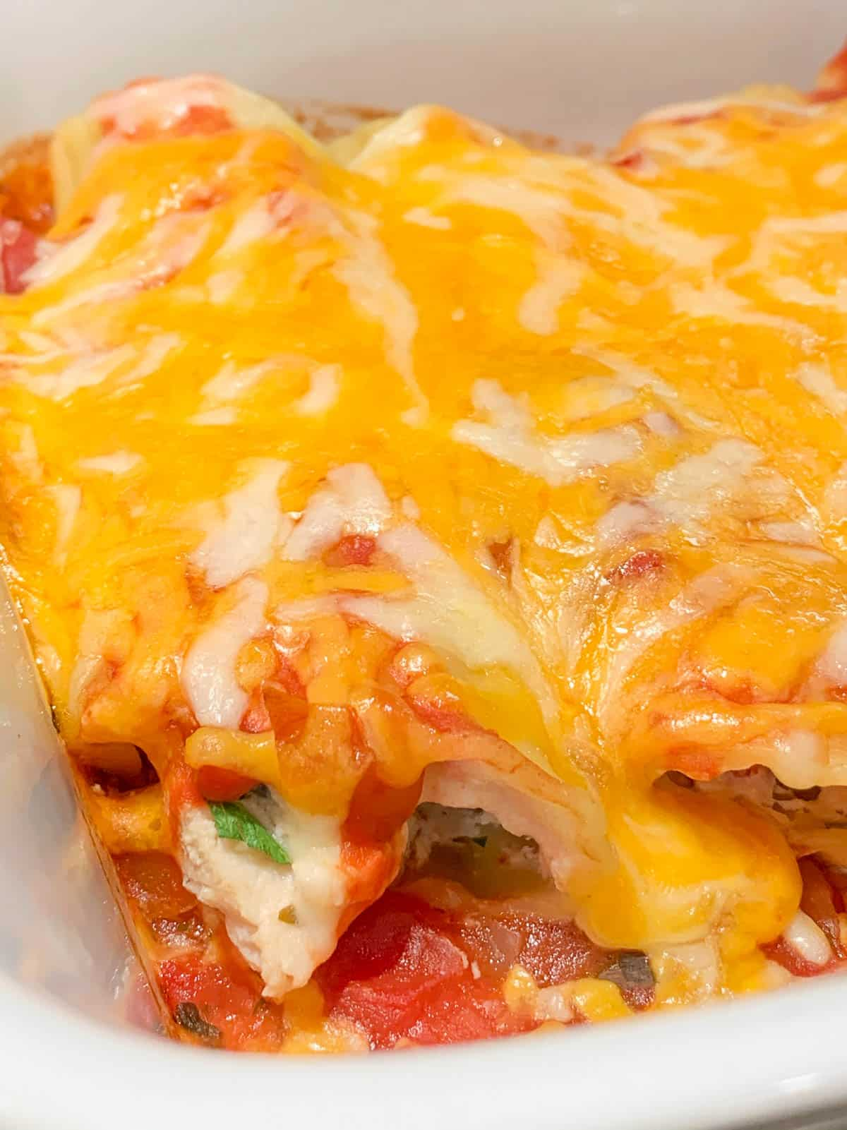delicious melted cheese on chicken stuffed manicotti shells